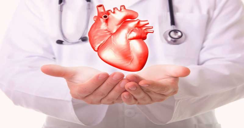 heart-disease-site-news